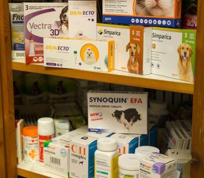 Állatgyógyszerek