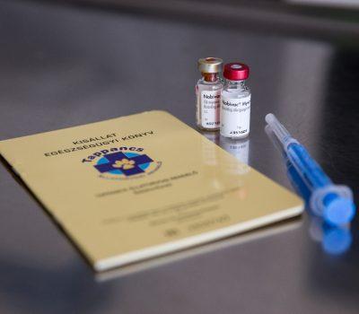 Schutzimpfungen, Mikrochip, Heimtierausweis